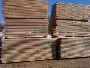 edged birch lumber