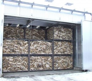 birch firewood in drier
